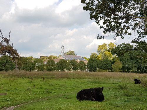 vakantie Limburg-Galloway in Ingendael |vakantiewoning Valkenburg